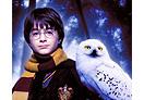 """Potterish :: Harry Potter, o Ickabog, Animais Fantásticos e JK Rowling PF entre """"Os melhores filmes de todos os tempos"""""""