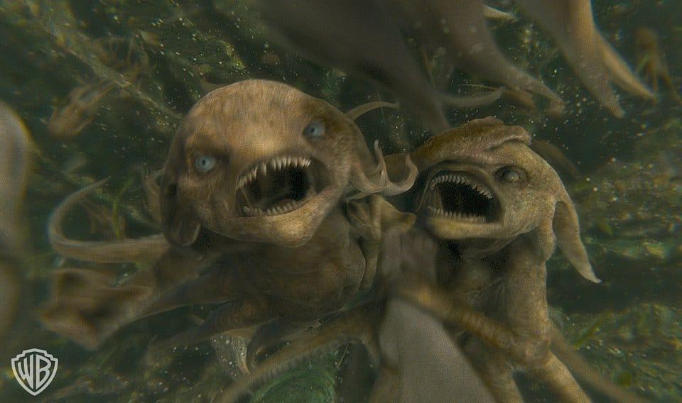 Pequenas criaturas aquáticas.